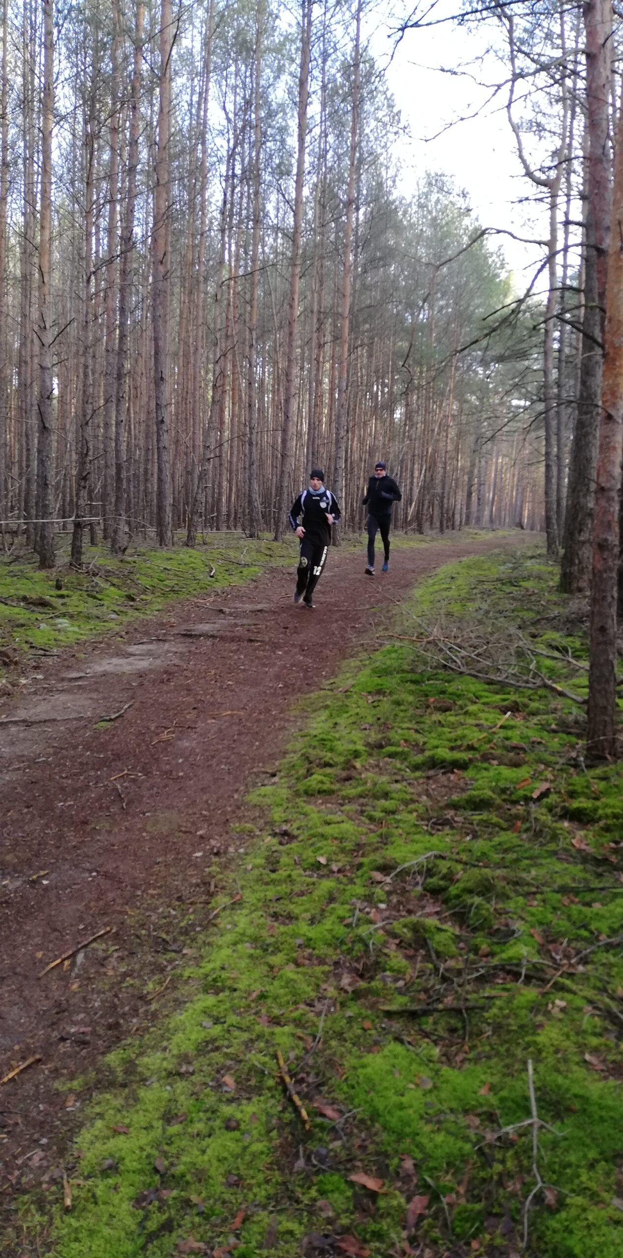 Neujahrslauf 2020 - 2 Läufer im Wald