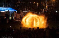 Fireflies Show